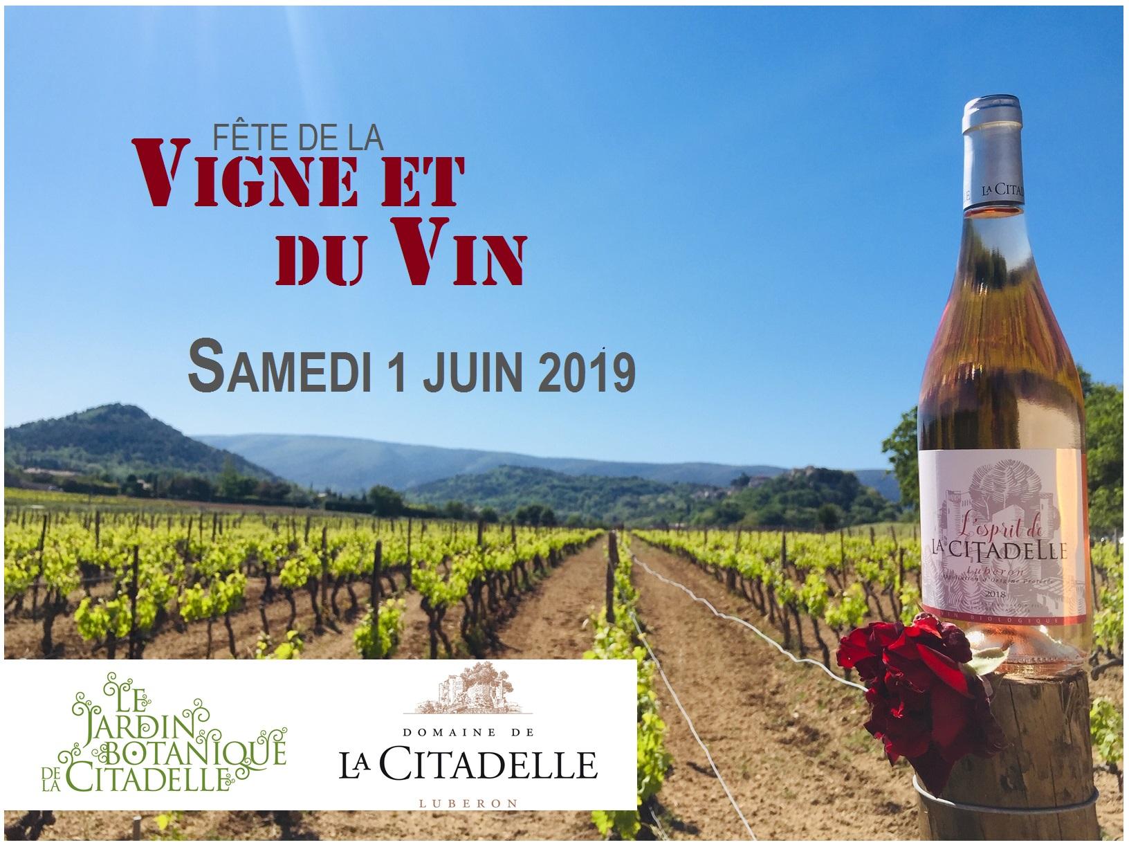 fête de la vigne et du vin 2019